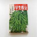 在来種/固定種/野菜の種「早生枝豆〔白老〕」50ml約90粒/畑懐〔はふう〕