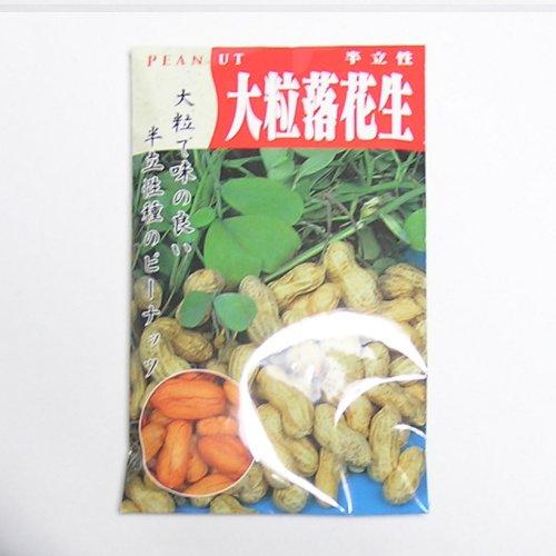 在来種/固定種/野菜のタネ「大粒落花生80ml約50粒」畑懐〔はふう〕の種【メール便可】