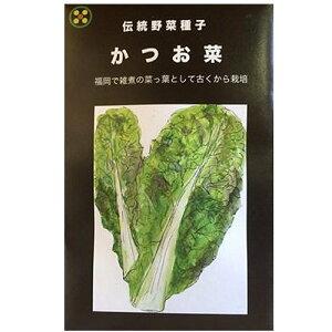 在来種/固定種/野菜のタネ「かつお菜5ml(約1400粒)」畑懐〔はふう〕の種【メール便可】