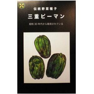 在来種/固定種/野菜のタネ「三重ピーマン0.5ml約40粒」畑懐〔はふう〕の種【メール便可】
