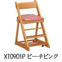 Xt0901p2
