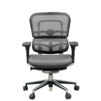 To Transfer Ergohuman Mesh Office Chair Basic Eh Lam Km 10 Gray Elastomeric Cash On Delivery If You Take Extra Shipping And Handling