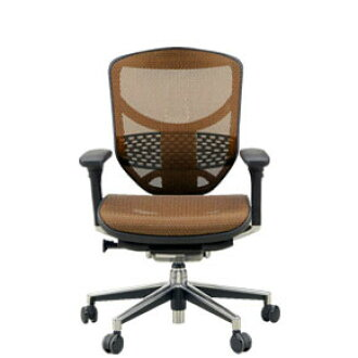 To Transfer Ergohuman Mesh Office Chair Enjoy Ej Ham Km 13 Orange Elastomeric Cash On Delivery If You Take Extra Shipping And Handling