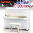 K300w main