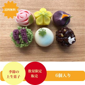 5月の上生菓子 6個入 練りきり 花 和菓子 上生菓子 生菓子 鹿の子