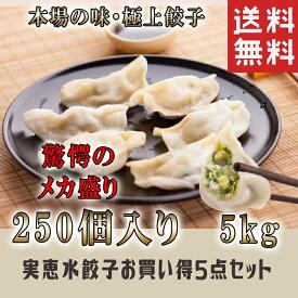 お買得5点セット 実恵特色水餃子 中華料理人気商品・中国名物