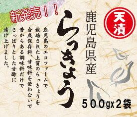 鹿児島産 らっきょう 500gX2袋 数量限定!