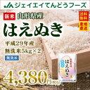 新米 無洗米 10kg 送料無料 29年産米 山形県産はえぬき無洗米10kg(5kg×2) ※一部地域は別途送料追加 お米 コメ 米 JA…