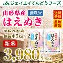あす楽 28年産 山形県産はえぬき無洗米10kg(5kg×2) 送料無料※一部地域は別途送料追加