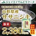 28年産 山形県産ササニシキ精米5kg 送料無料※一部地域は別途送料追加