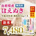 米 送料無料【無洗米】 28年産米 山形県産米 はえぬき 20kg ※一部地域は別途送料追加
