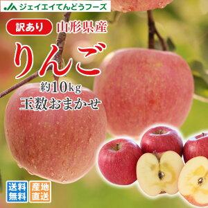 訳あり りんご 10kg 送料無料 山形県産 品種おまかせ 約10kg(28〜56玉) ※一部地域は別途送料追加 フルーツ 果物 サンふじ ap13