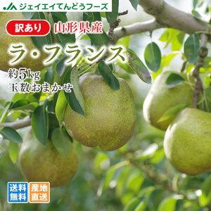 訳あり 果物 送料無料 山形県産洋梨ラフランス 約5kg ※一部地域は別途送料追加 rf21