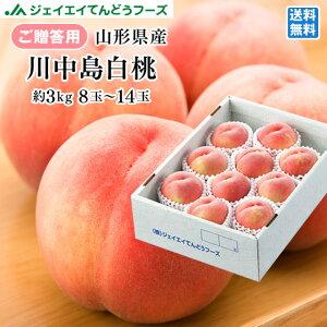 【早期予約】贈答用 山形県産白桃 川中島 約3kg(8〜14玉) 果物 フルーツ  ※一部地域は別途送料 pc03