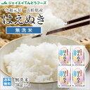 米 送料無料【無洗米】令和元年産 山形県産米 はえぬき 20kg(5kg×4) ※一部地域は別途送料追加 rhm2001