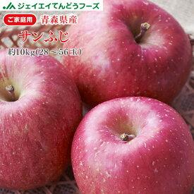りんご 訳あり 10kg 送料無料 青森県産 サンふじ 約10kg玉数おまかせ) バラ詰め ※一部地域は別途送料追加 フルーツ 果物 果物 順次出荷 ap13