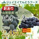 訳あり ぶどう 送料無料 山形県産ピオーネ 約2kg(房数おまかせ) 果物 フルーツ ※一部地域は別途送料追加
