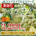 訳あり 果物 ラフランス 山形県産 約5kg(10〜20玉) 送料無料 一部地域は別途送料追加 フルーツ n11