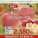 訳あり りんご 10kg 送料無料 山形県産 りんご 約10kg(28〜56玉) バラ詰め ※一部地域は別途送料追加 予約商品 フルー…