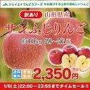 訳あり りんご 10kg 送料無料 山形県産 りんご 約10kg(28〜56玉) ※一部地域は別途送料追加 フルーツ 果物 サンふじ t02