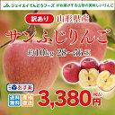 訳あり りんご 10kg 送料無料 山形県産 りんご 約10kg(28〜56玉) ※一部地域は別途送料追加 フルーツ 果物 サンふじ t02 あす楽対応