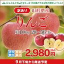 訳あり りんご 10kg 送料無料 山形県産 りんご 約10kg(28〜56玉) バラ詰め ※一部地域は別途送料追加 フルーツ 果物 …
