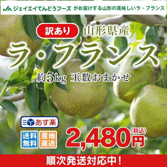 あす楽 訳あり 果物 送料無料 山形県産洋梨ラフランス 約5kg ※一部地域は別途送料追加 n11