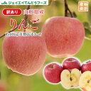 予約商品 訳あり りんご 10kg 送料無料 山形県産 りんご 約10kg(28〜56玉) バラ詰め ※一部地域は別途送料追加 フルー…
