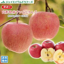 訳あり りんご 10kg 送料無料 山形県産 サンふじりんご 約10kg(28〜56玉) ※一部地域は別途送料追加 フルーツ 果物 t02