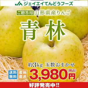 りんご ギフト 送料無料 山形県産 青林 約3kg(玉数おまかせ) ※一部地域は別途送料追加 フルーツ 果物 あす楽対応 内祝い 贈り物 ギフト のし対応
