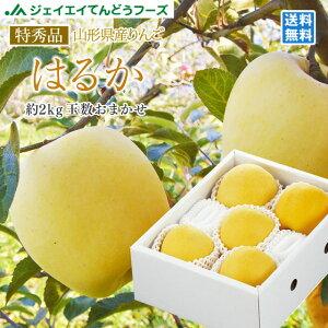 ギフト 送料無料 りんご 送料無料 特秀品 JAてんどう 山形県産りんごはるか 約2kg(玉数おまかせ) ※一部地域は別途送料追加 のし対応 ギフト 糖度15度以上 贈答用 内祝い 贈り物 ギフト ap37