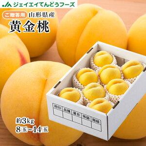 【早期予約】贈答用 山形県産 黄金桃 約3kg(8〜14玉) 秀品 ギフト 一部地域は別途送料追加 pc11
