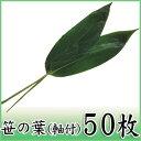 【笹の葉(軸付) 50枚】ちまきに最適な国産軸付き笹葉