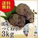 つくね芋 3kg 天極堂 国産 山芋 とろろ 和食 和菓子