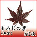 もみじ 紅葉 50枚 天極堂 和食 和菓子 赤もみじ 飾り葉 敷き葉 秋