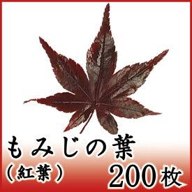 もみじ 紅葉 200枚 天極堂 和食 和菓子 赤もみじ 飾り葉 敷き葉 秋