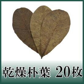 乾燥朴葉 20枚 天極堂 和食 朴葉味噌 敷き葉 郷土料理 ほおば ほうば 枯れ朴葉
