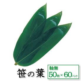 笹の葉 軸無 お得な60パックセット 50枚×60パック 天極堂 和食 青笹 飾り葉 敷き葉 業務用