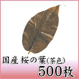 桜の葉塩漬け 茶色 500枚 天極堂 桜葉 桜餅 道明寺 長命寺 業務用