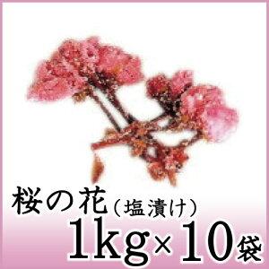 桜の花 塩漬 1kg×10袋 関山 天極堂 国産 和菓子 和食 【送料無料】