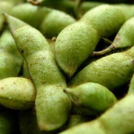丹波 黒豆 枝豆 有機 黒大豆枝豆 さや 1kg 早生 黒枝豆 送料無料