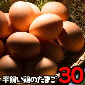 送料無料 卵 たまご 平飼い鶏の卵 産みたて 兵庫県産 30個入り