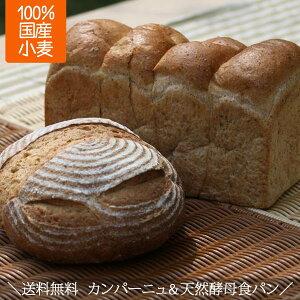 天然酵母 天然酵母パン 天然酵母食パン 食パン カンパーニュ ギフト 詰め合わせセット