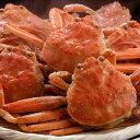 送料無料 カニ かに 蟹 せこがに セコガニ せいこ蟹 ギフト 山陰 日本海産 計700g前後 140g前後×5匹