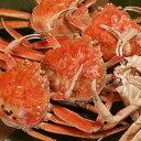 送料無料 カニ かに 蟹 せこがに せいこ蟹 セコガニ ギフト 山陰 日本海産 110g前後×3匹