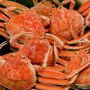 送料無料 カニ かに 蟹 せこがに セコガニ せいこ蟹 ギフト 山陰 日本海産 190g前後×2匹