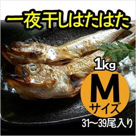 送料無料 一夜干し ハタハタ はたはた 1kg(31〜39尾)干物 山陰 日本海 兵庫県産 冷凍品 無添加