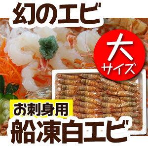 幻の船凍白えび 白えび 500g エビ 特大 (30匹前後) 冷凍 唐揚げ 天ぷら 塩焼き 塩茹で 炒め物