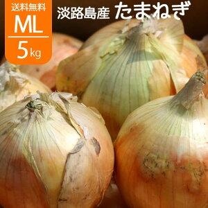 送料無料 たまねぎ 淡路島 玉葱 タマネギ 淡路島産 大小混合 L〜2L 5kg
