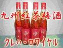 【送料無料】 九州紅茶梅酒 クレハロワイヤル 14度 500ml 12本入り (送料無料) 【送料無料12/8-10】